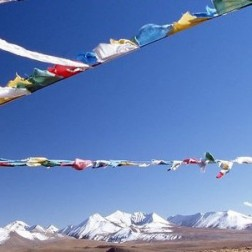 656122__flags-in-tibet_p